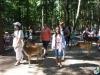 ferienprogramm-wildpark-poing-3